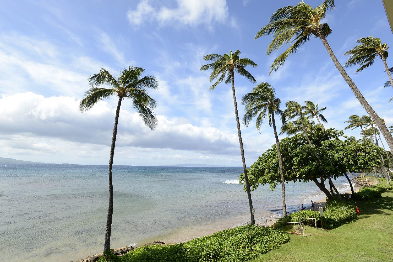 Kanaʻi A Nalu