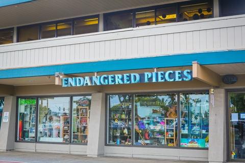 Endangered Pieces – Kihei