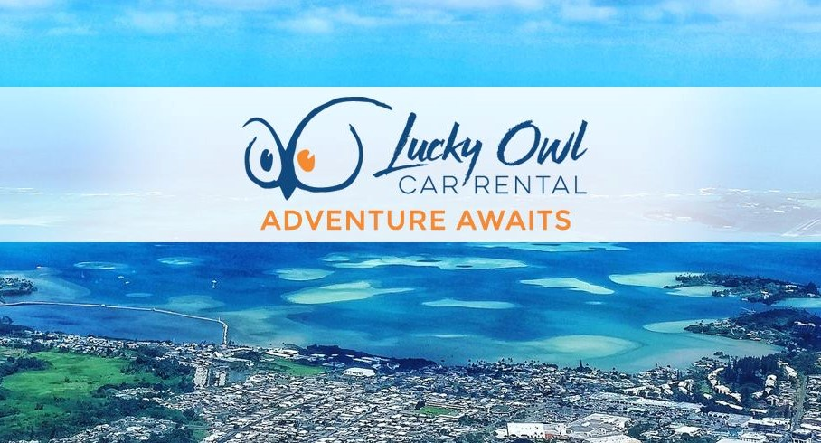 Lucky Owl Car Rental
