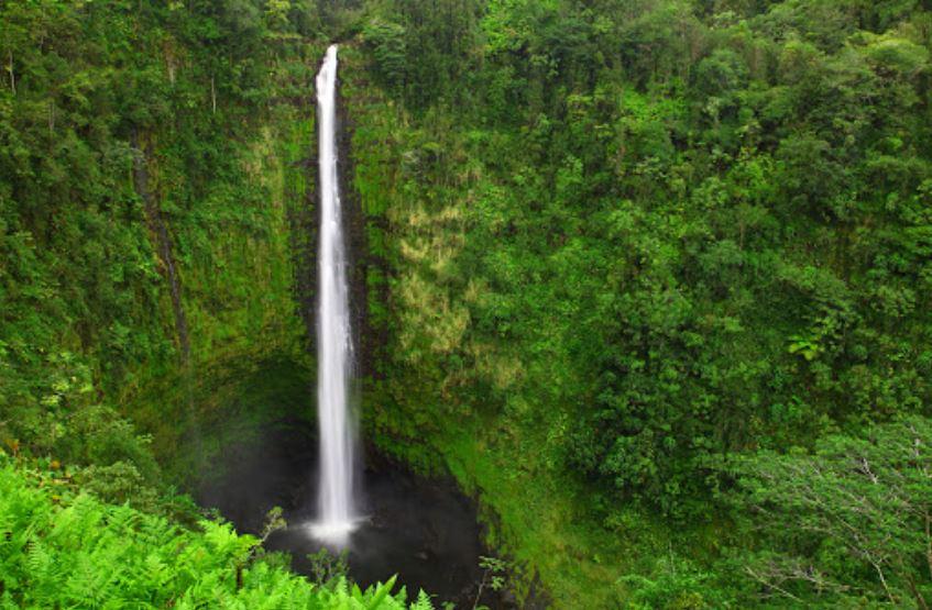 C Big Island Tours