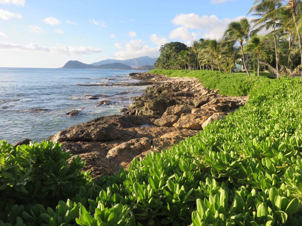 Fun Hawaii Travel