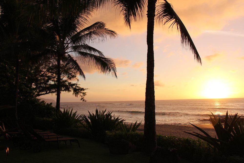 Aloha VIP Tours Inc
